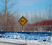 """Turn Left"" sign in the Port Lands, Toronto 2011-01-09"