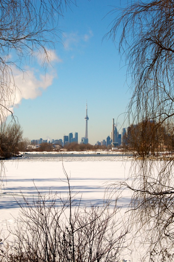 A distant view of the CN Tower from Ashbridge's Bay Park, Toronto 2011-02-03