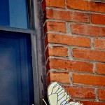 Butterfly by window in the west end, Toronto 2010-07-31