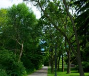 Path leading to Colonel Samuel Smith Park, Toronto 2011-06-26