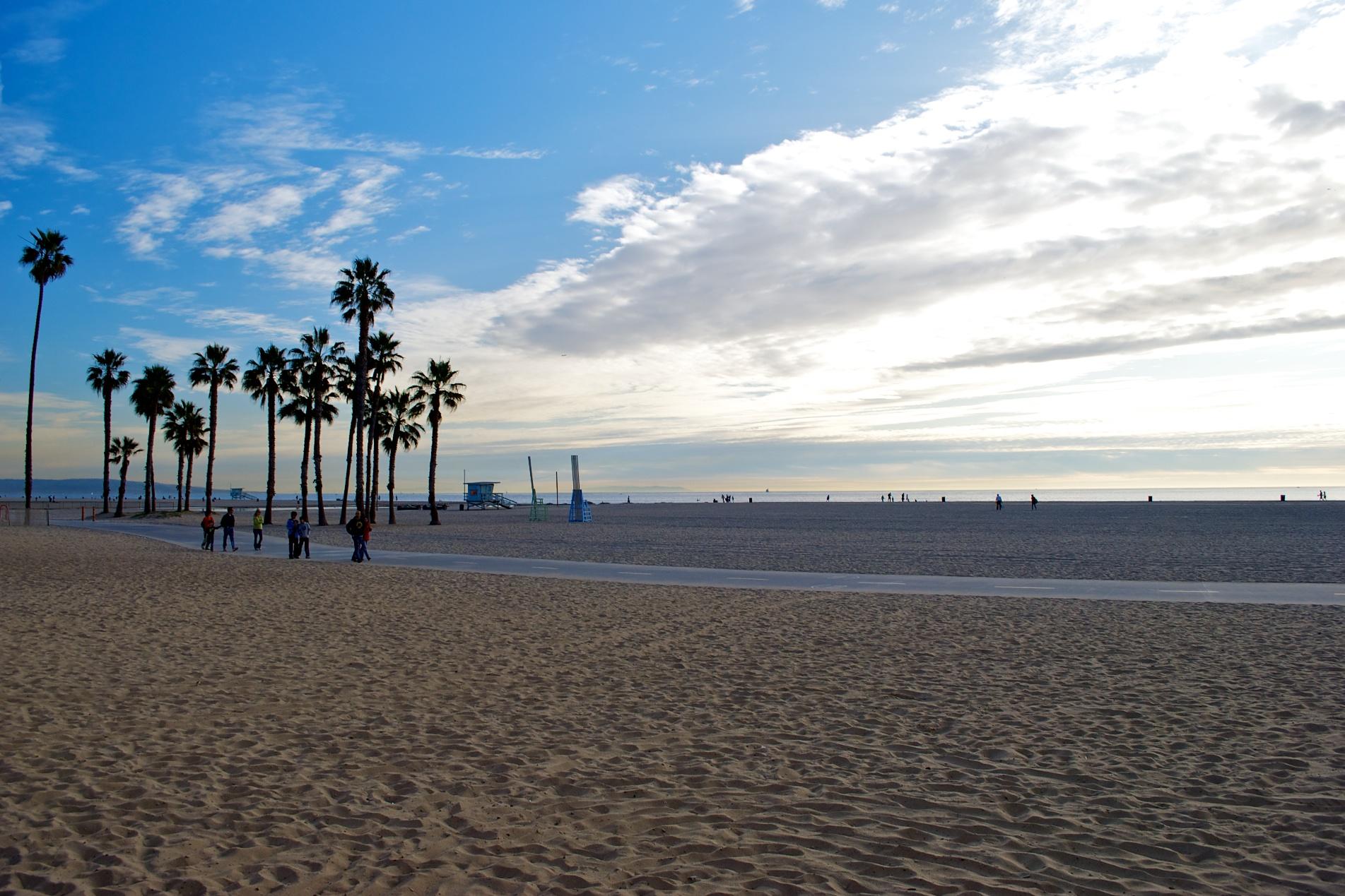 Palm Trees By The Beach In Santa Monica California 2009 12 28