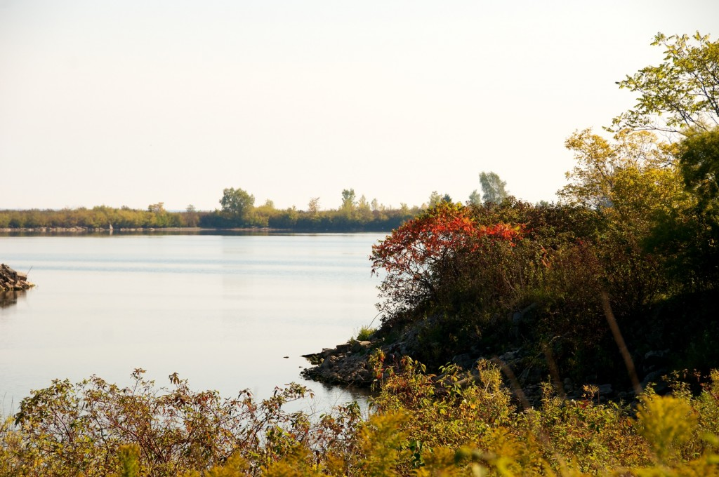 Layered landscape in Tommy Thompson Park, Toronto 2011-10-08