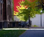 Near the Tanz Neuroscience Building, University of Toronto 2011-11-06