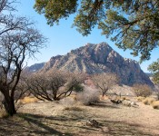 Picturesque view, Spring Mountain Ranch State Park, Nevada 2012-01-18