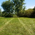 Tire tracks in the grass, Ashbridge's Bay Park, Toronto 2011-09-09