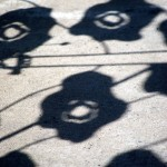 Shadows near rue Notre Dame in Lachine 2012-07-25