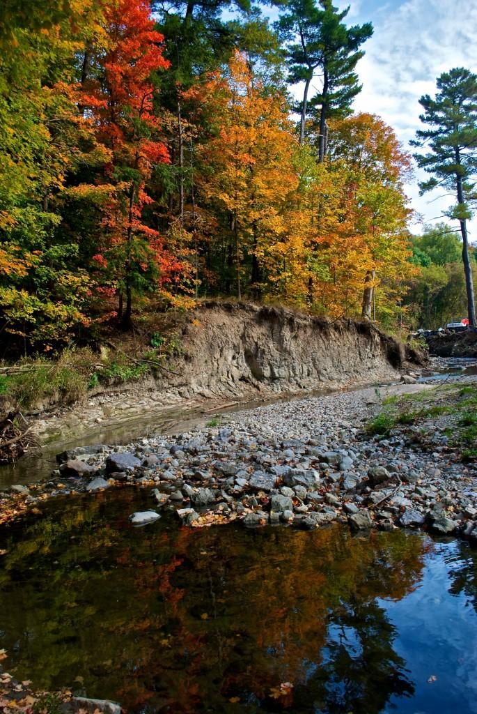 Along a creek in Edwards Gardens, Toronto 2011-10-11
