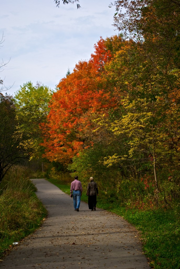 Taking a stroll in Edwards Gardens, Toronto 2011-10-11