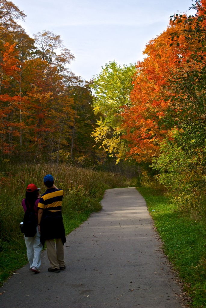A couple enjoying Edwards Gardens, Toronto 2011-10-11