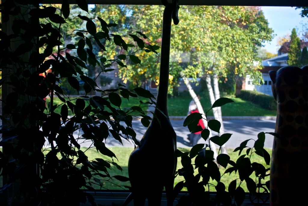 Looking out the window [Dorval 2012-10-08]