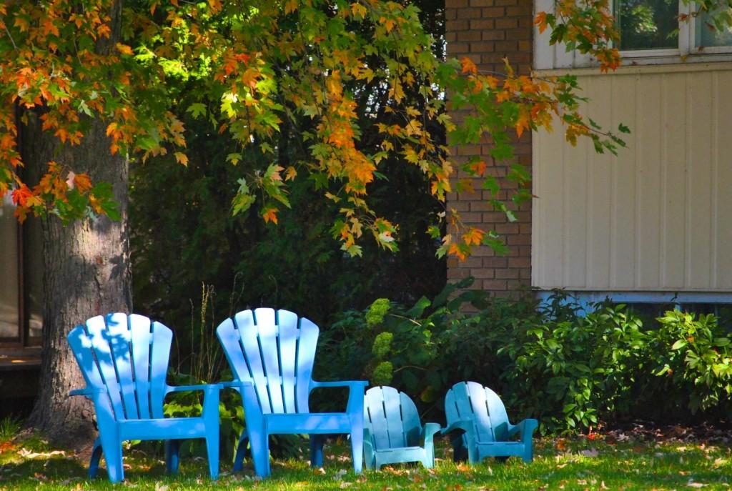 DSC_0068 - Fall sitting